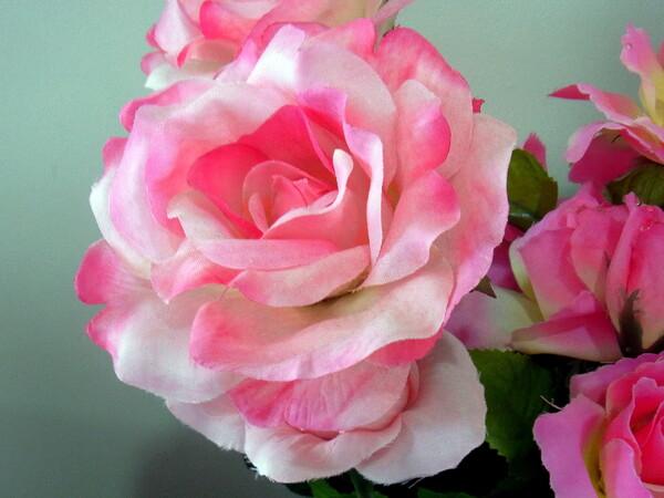 薔薇のUP