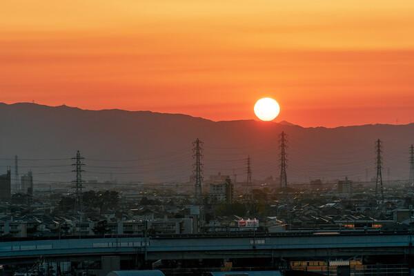 夕陽の【はな】
