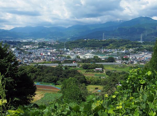 神奈川県・秦野市