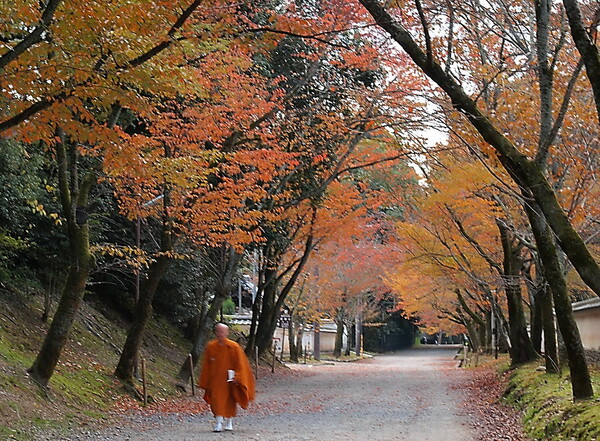 醍醐寺の紅葉4