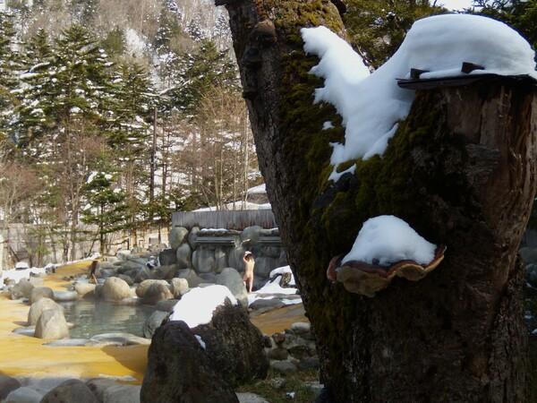 平湯にて雪見風呂・・・
