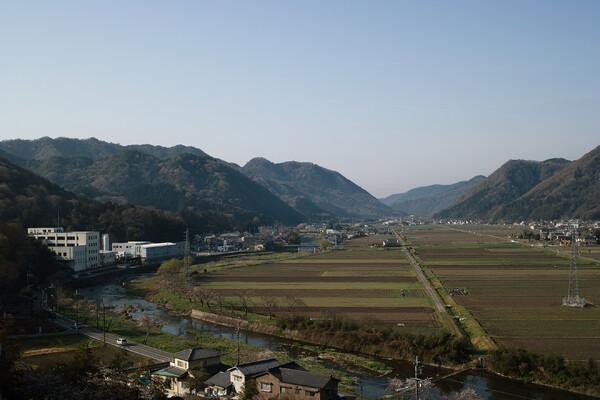【旅】田園風景(朝)
