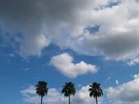 空は青いか
