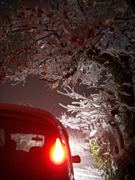 今夜も雪道を帰って来ました