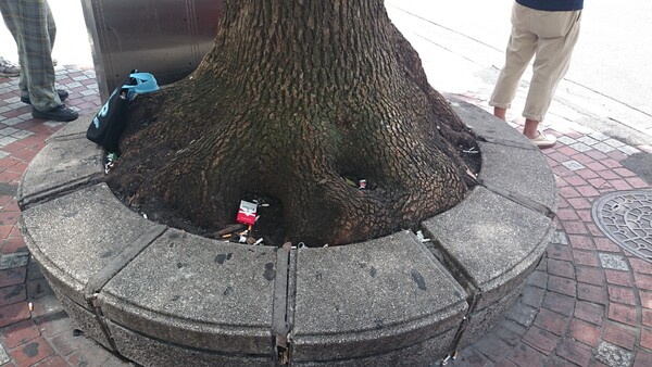 【木】うーん狭い