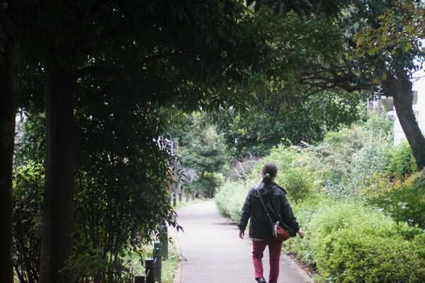 烏山川緑道にて