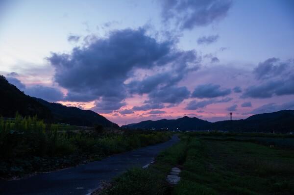 美しい夕焼けに・・。