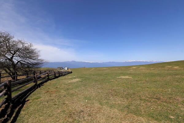 アルプスの見える牧歌的風景