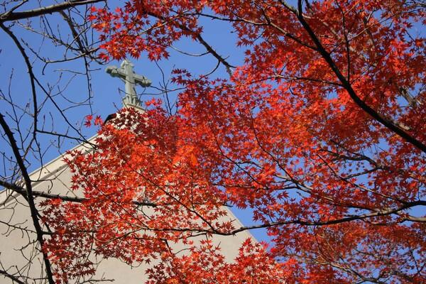 教会の紅葉