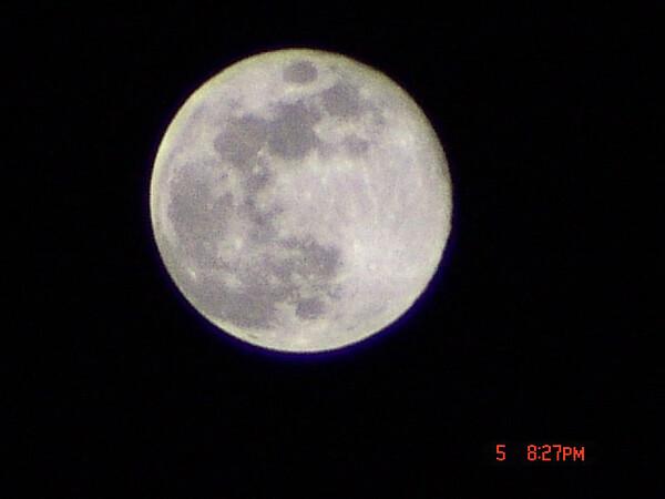 昨夜の満月です