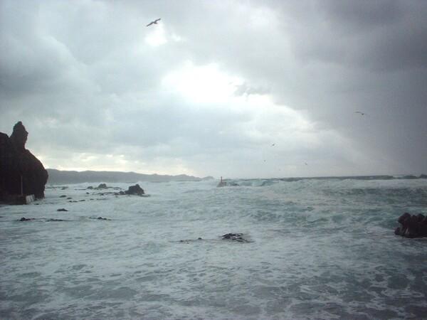 【流】海2