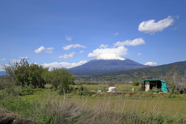 富士市中里の富士景