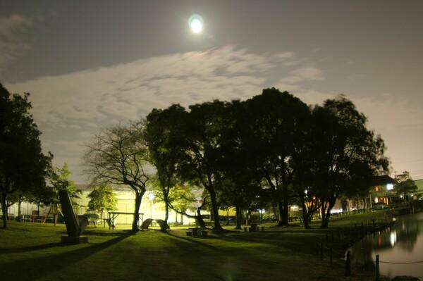 「秋影」 十三夜