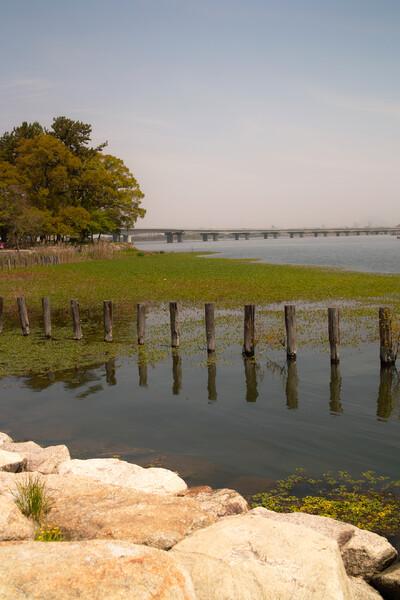 【縦画像】近江八景ではない