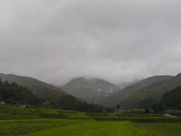 今朝も雨空!