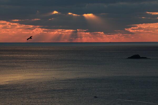 神々の住まう海