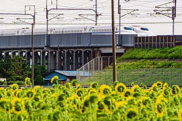 新幹線ランデブー