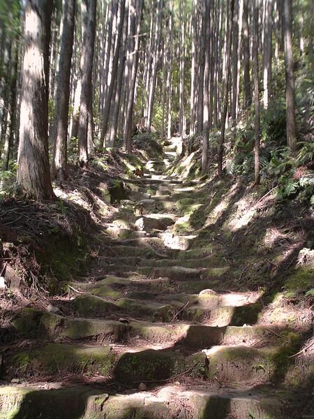 (わびさび)熊野古道