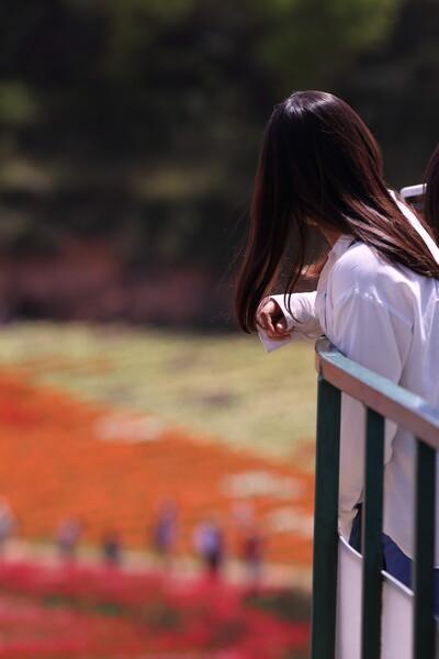 栗色の髪の乙女 in  世羅高原農場