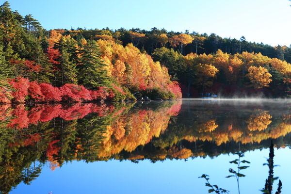 秋を撮りに Ⅲ