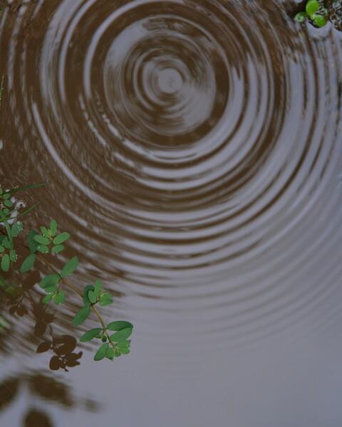 【水】水紋