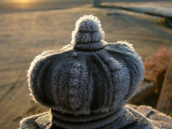 ほこらのうえの霜