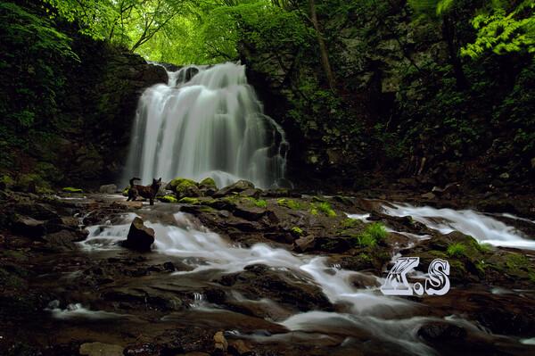 【フリー】 思い出の滝