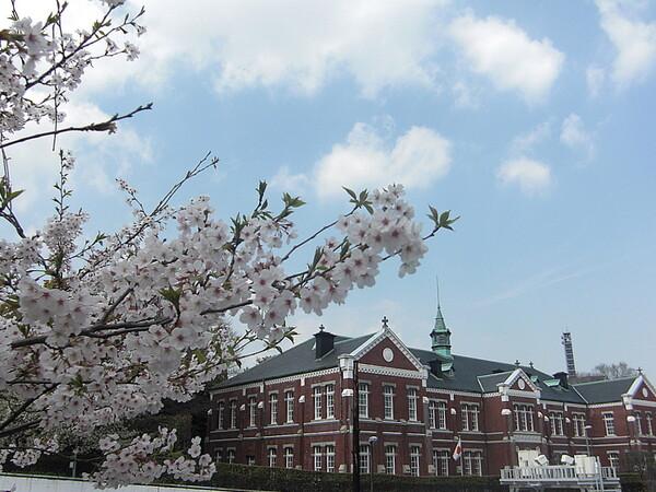 【桜】工芸館
