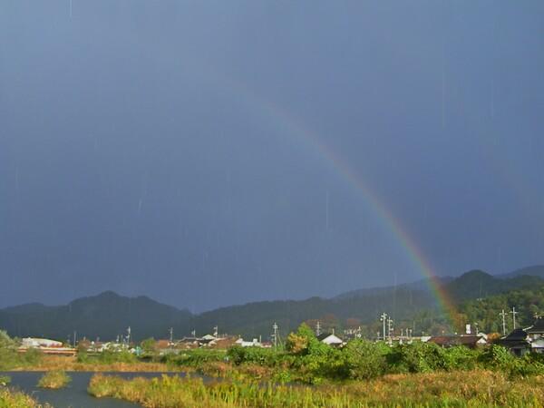 雨やミゾレの中の虹!