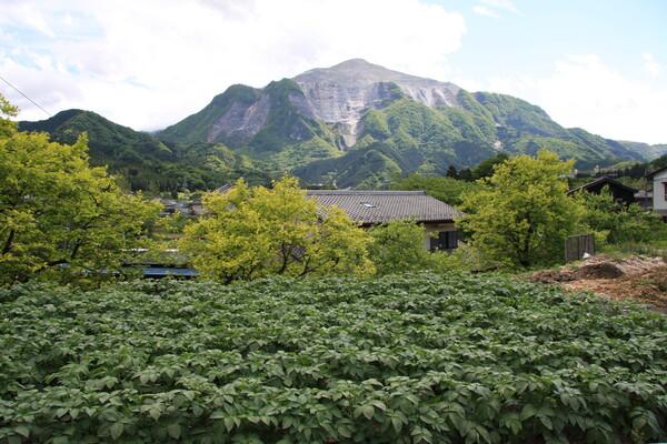 【植】背景に山が見える畑