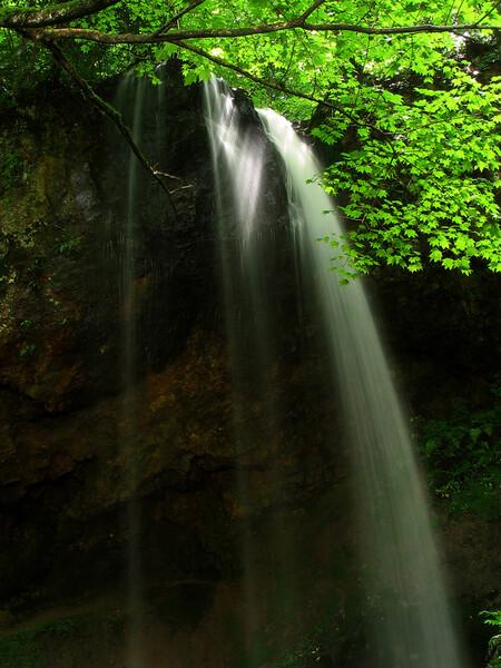 雨後の小滝