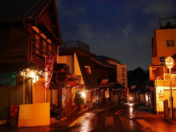 成田山の夜