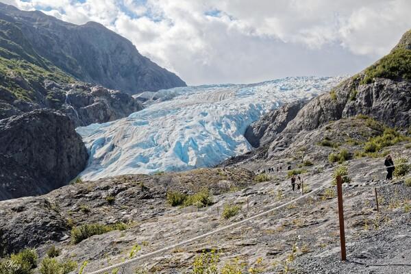 Exit Glacier 全景