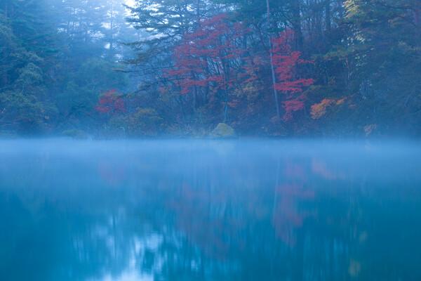 霧のむこうに