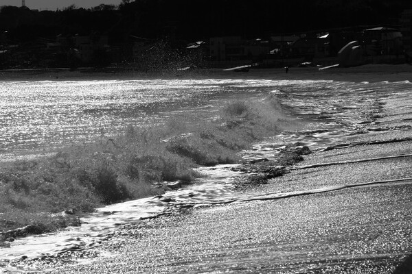 冬、三浦海岸