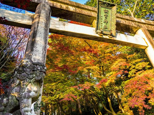 胡宮神社3