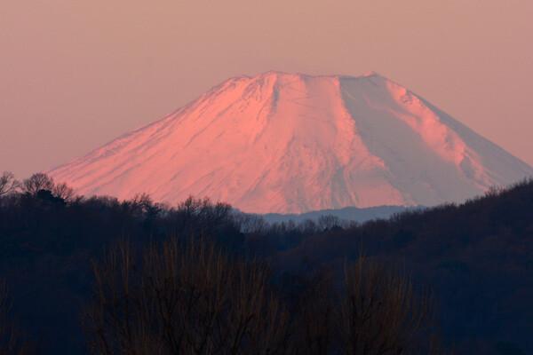 正月の紅富士