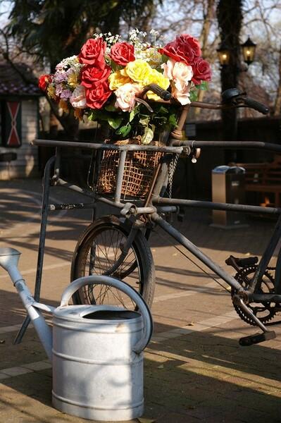 【花】と自転車とジョウロと