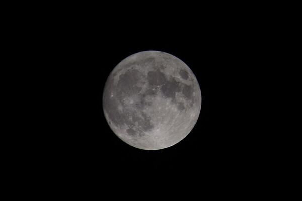 月はやっぱり綺麗なの〜。