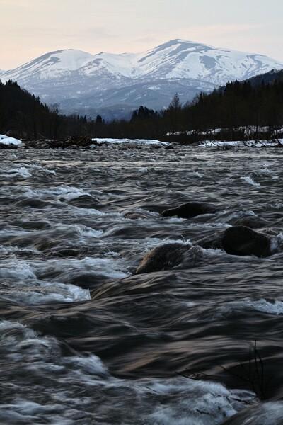 春の流れ 寒河江川