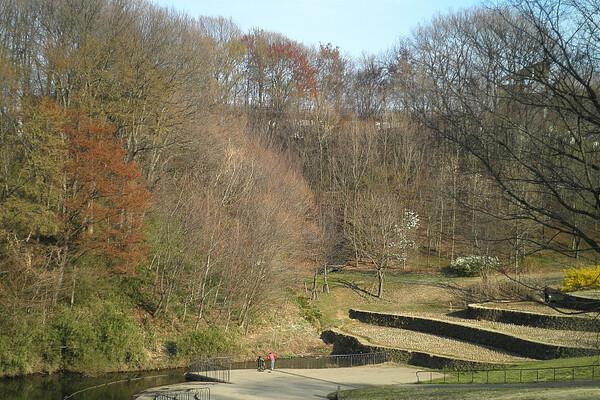 栃谷戸公園