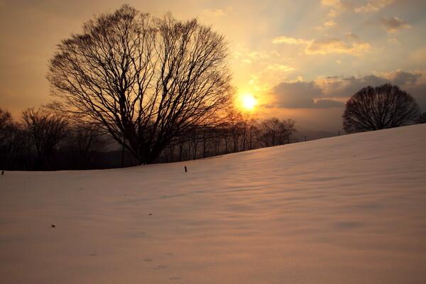 大峰高原の初日の出