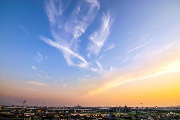 【花・空のある写真】5/26の夕焼け