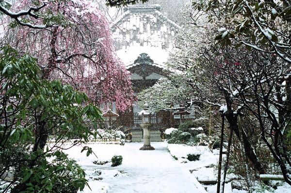 雪降りて、無量寺