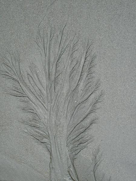 [縦撮り]砂のアート