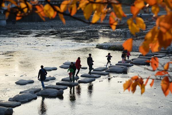 秋の賀茂川