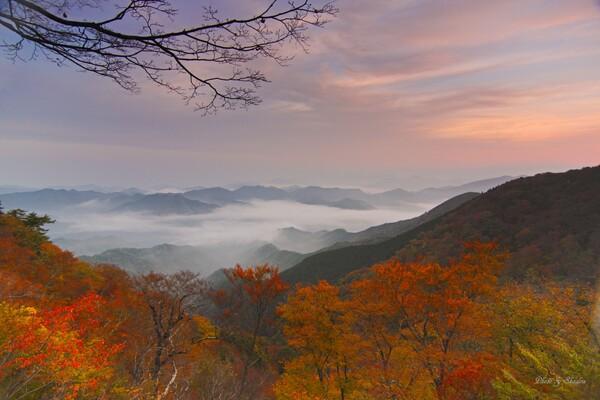 野迫川の秋