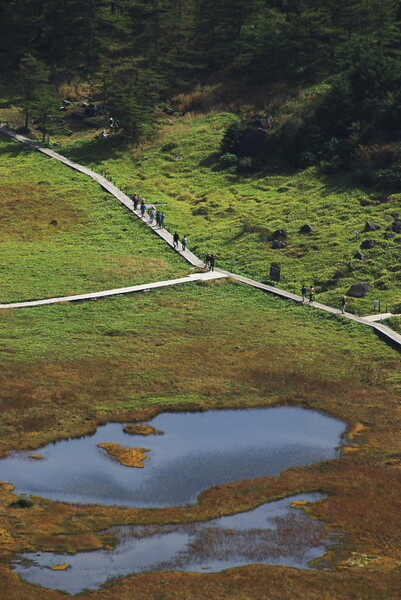池ノ平湿原