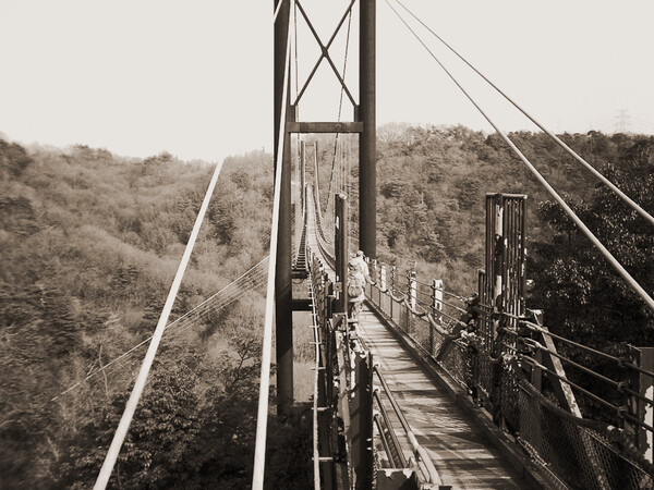 (道)吊り橋の道