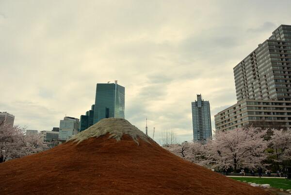 江戸富士と桜